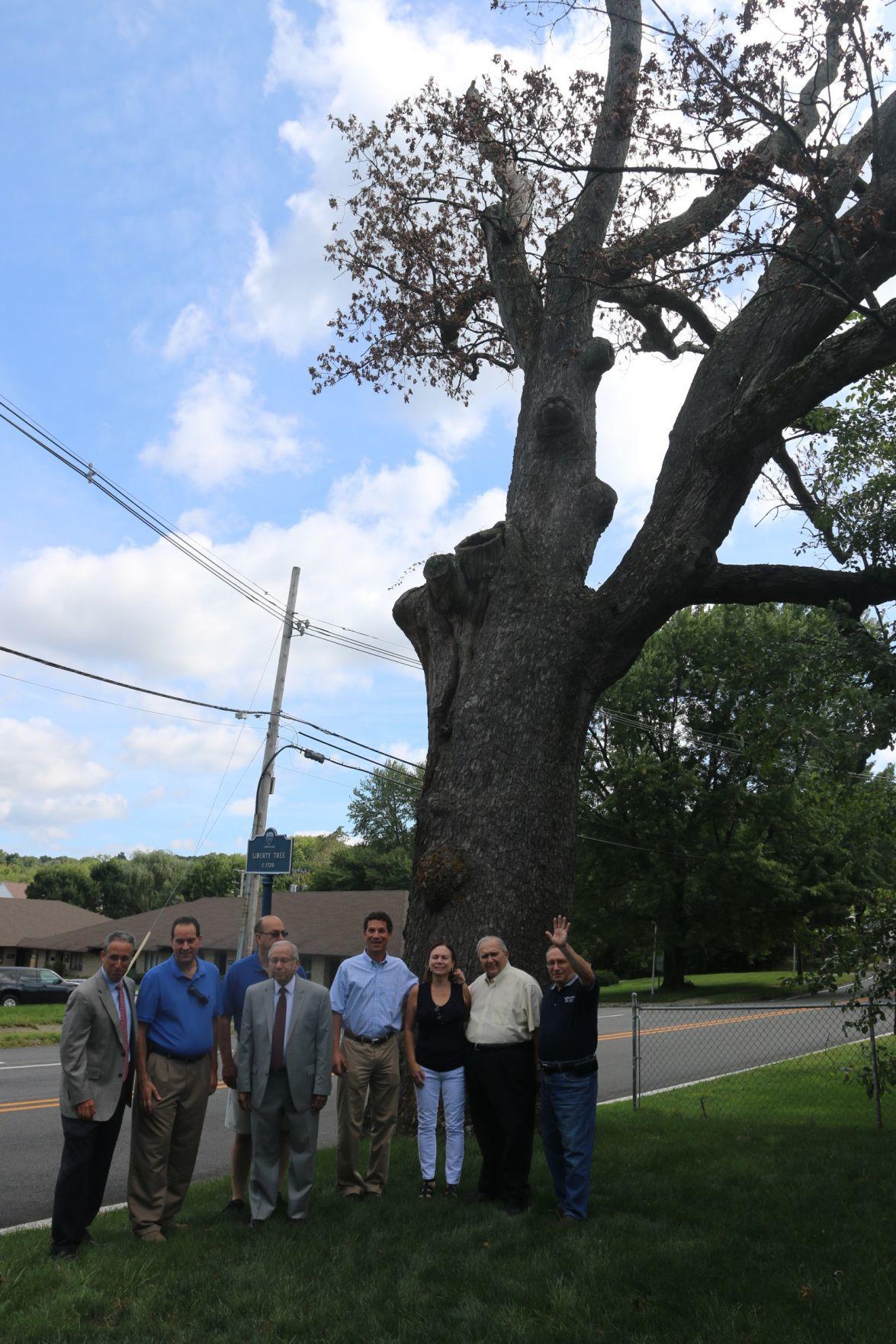 Liberty Tree Farewell