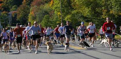 Hounds & Harriers Run brings in $11,000 for St. Hubert's
