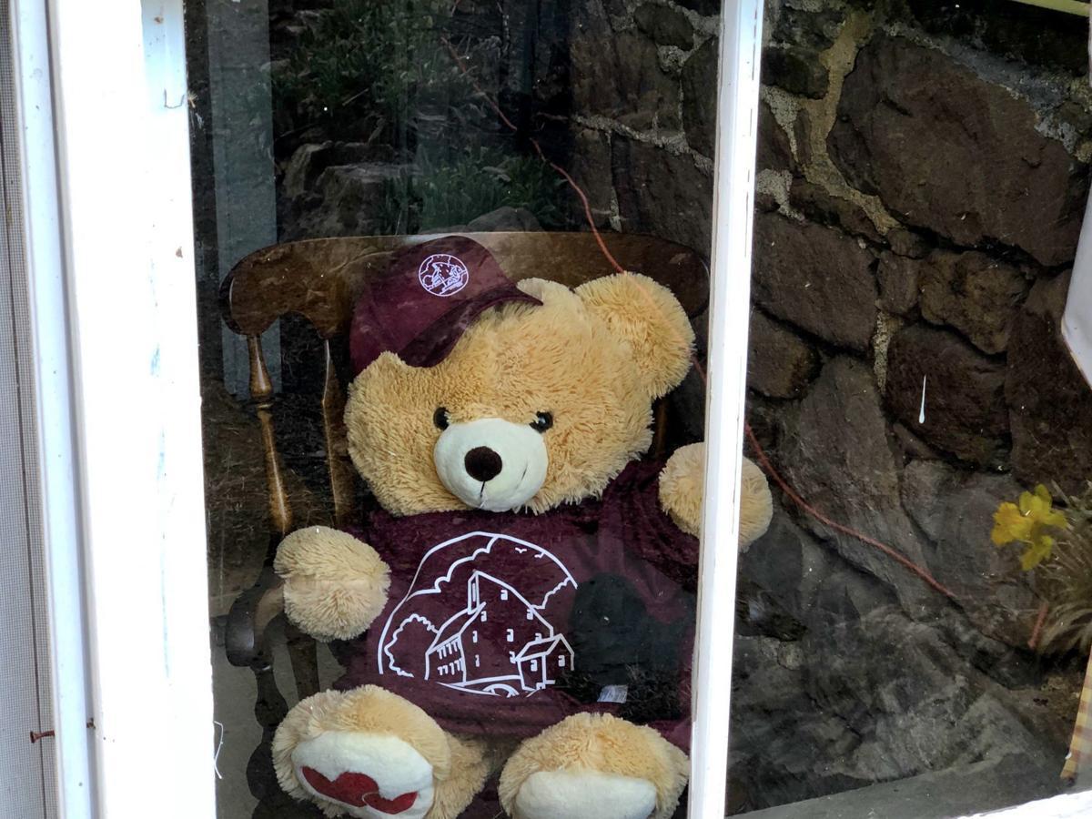Clinton kids go on the hunt for Teddy Bears