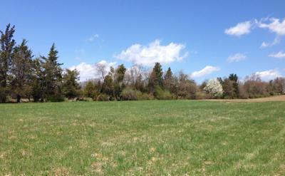 Newly preserved farm protects Readington's historic character