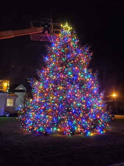 Warren Christmas tree lighting canceled