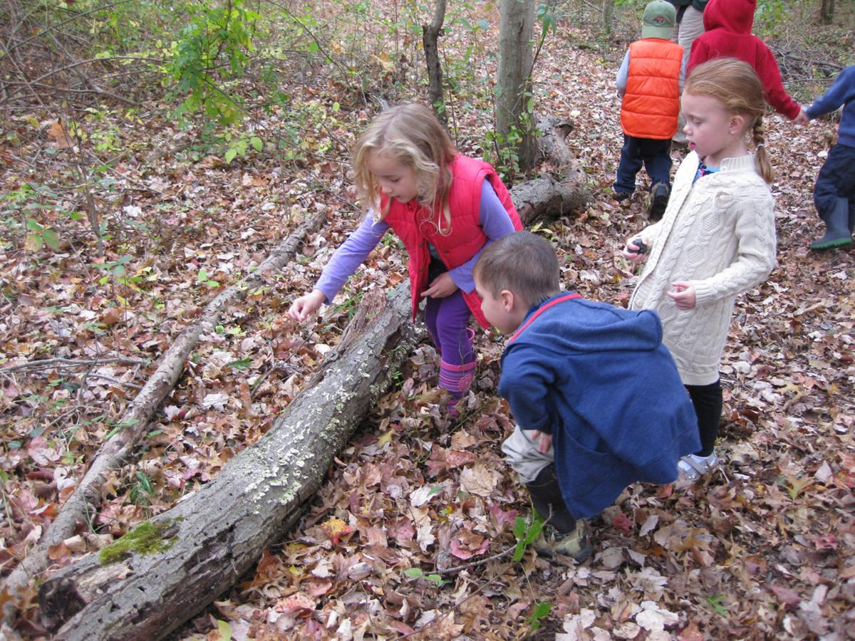 Young Explorers at the EEC