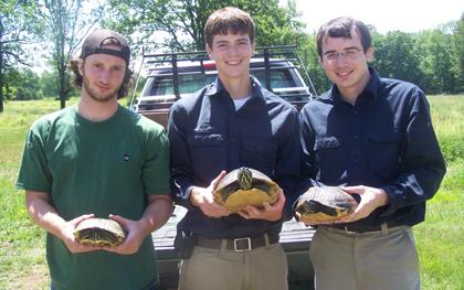 Biologists lend a helping hand to turtles at refuge