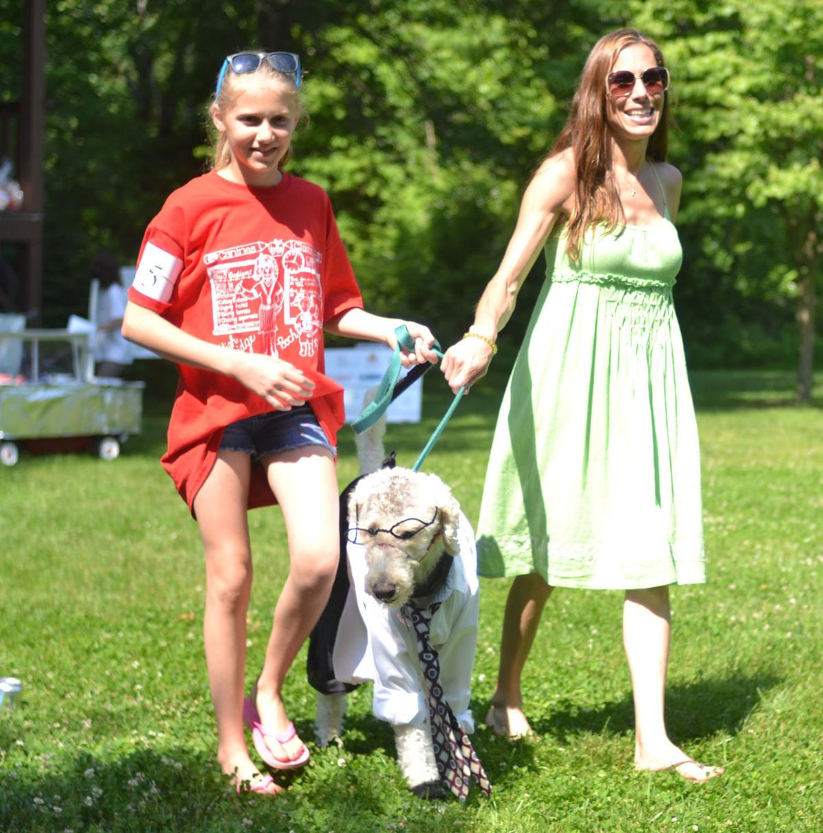 High Bridge pooches parade along the Commons once more