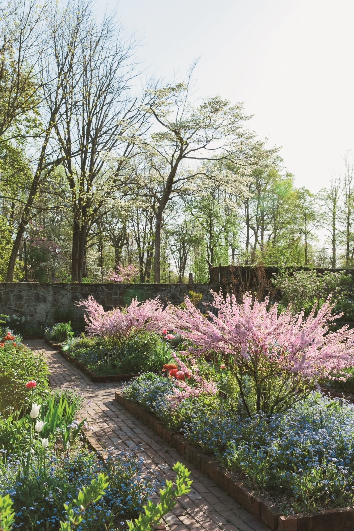 Cross Estate Gardens in Bernardsville