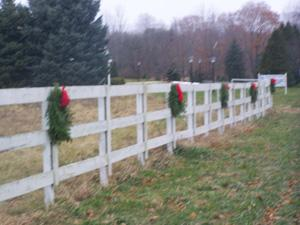 Sale of Christmas wreaths to bring holiday joy to needy
