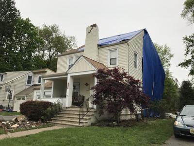 Trees damage home