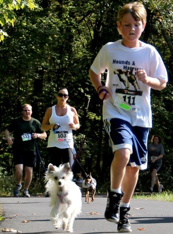 Hounds and Harriers Run