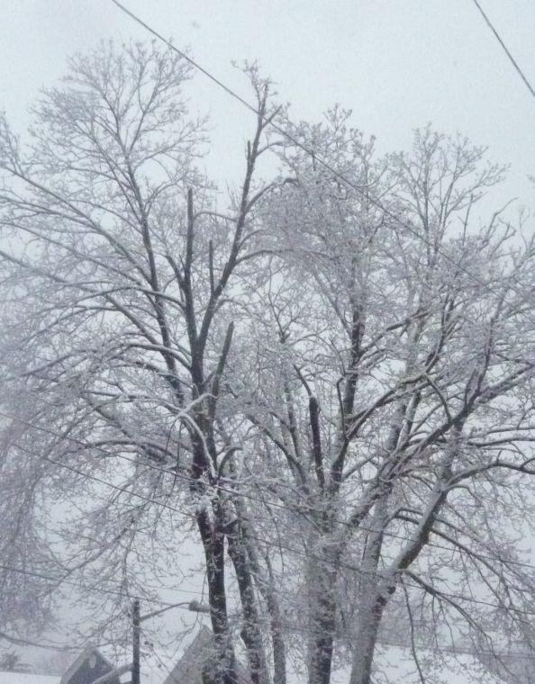 Snow blankets Caldwell