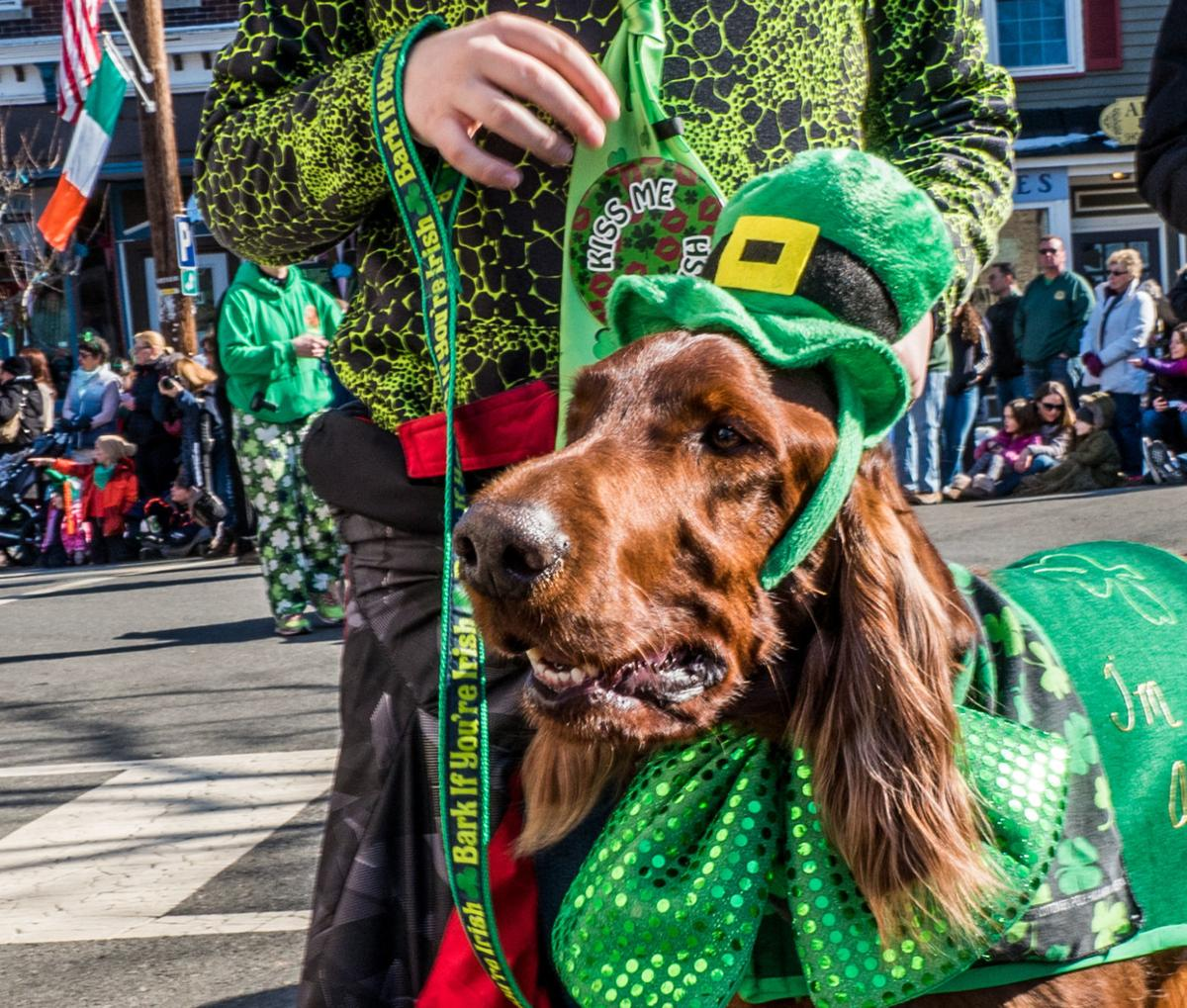Friendly Sons of Saint Patrick wearin' of the green on Main Street