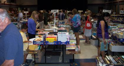 From Disney's Nemo to the mysterious 'Blood and Guts,' annual Bernardsville book sale offers bargain somethings for everyone
