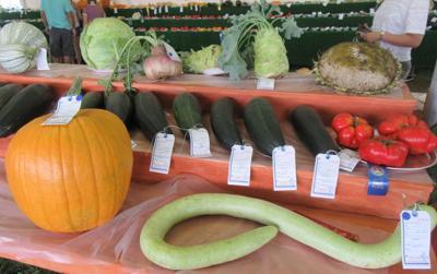 Vegetable, flower, fruit shows coming soon to Hunterdon 4-H & Ag Fair