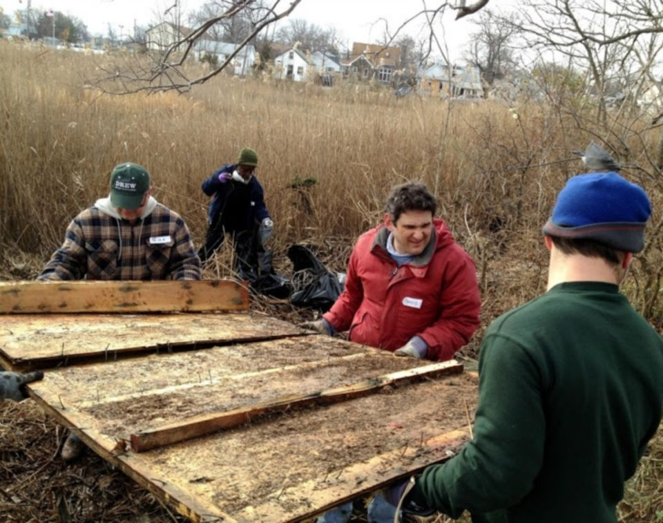 Pitching In At Union Beach