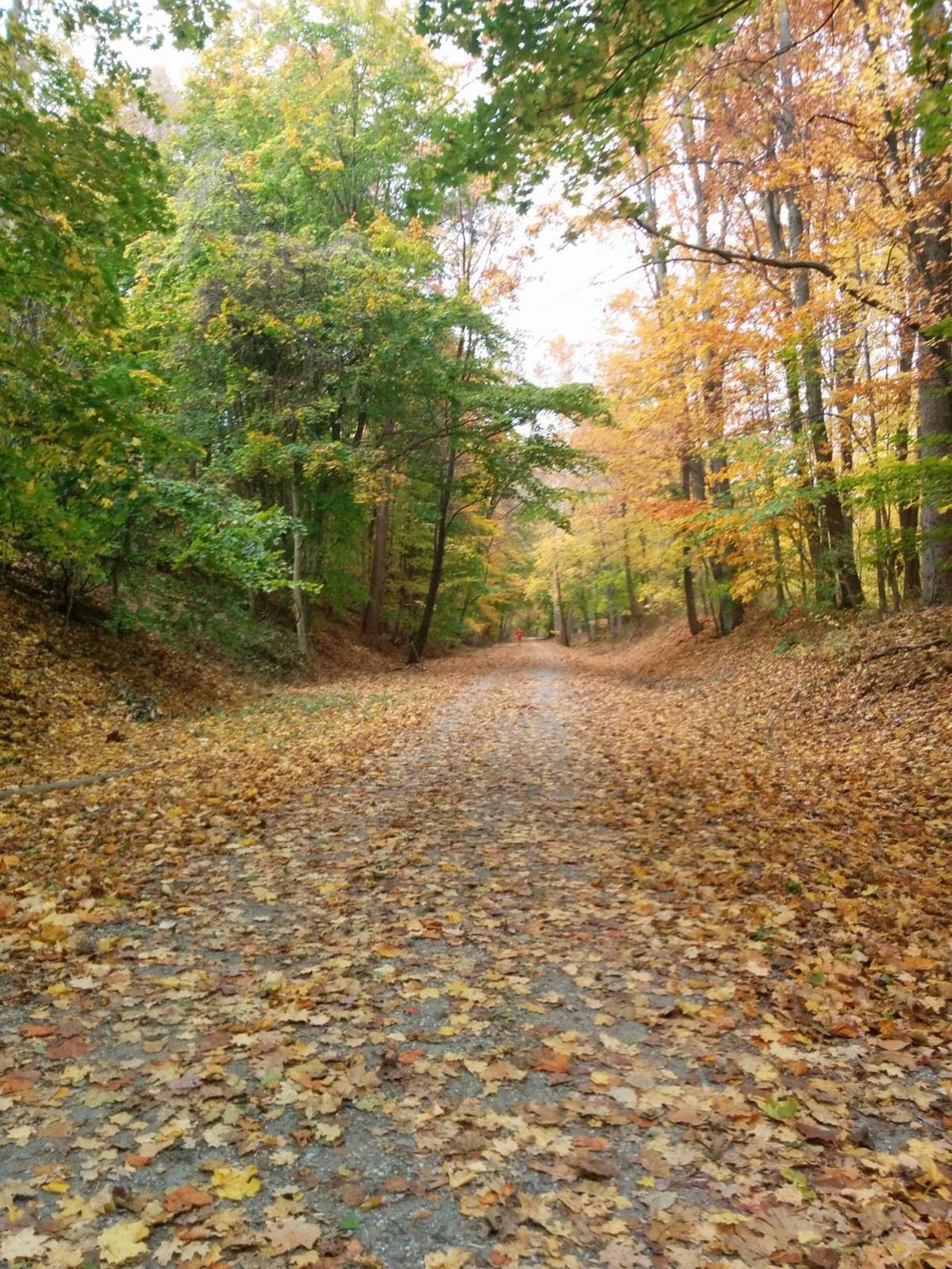 High Bridge Hike & Bike takes in Columbia Trail on Sunday, Nov. 11
