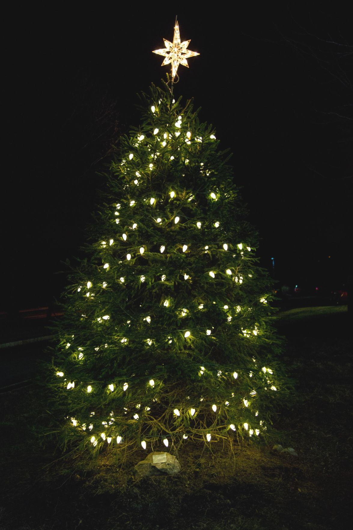 'Making Spirits Bright' at Readington's 13th annual holiday tree lighting
