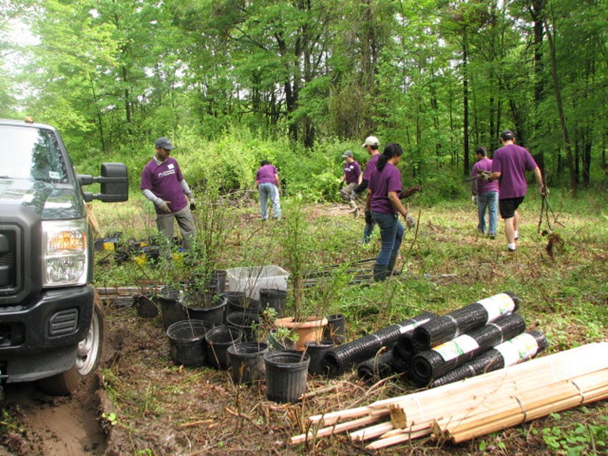 Volunteers perform trail clean-up activities