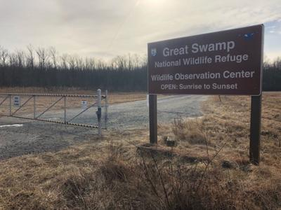Great Swamp stays open as government shutdown drags on