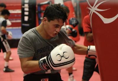 Vito training