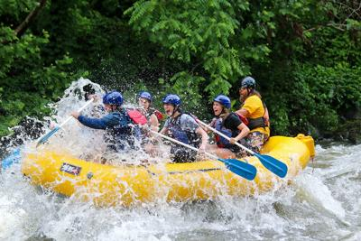 Rafting numbers continue to grow