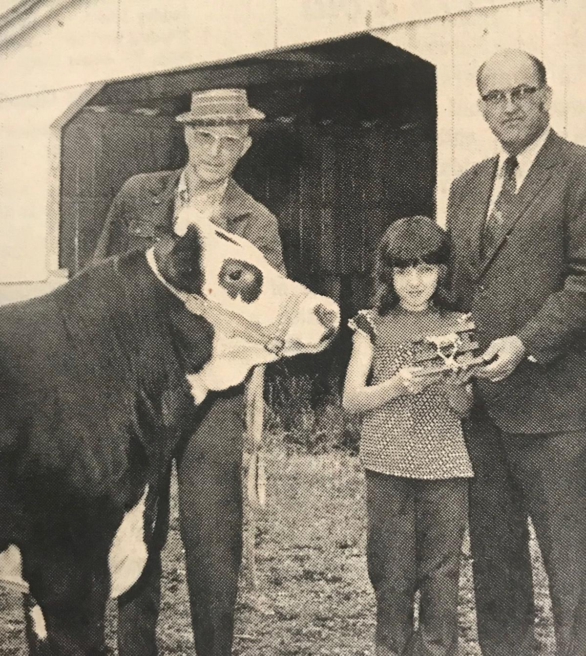 The champion shorthorn