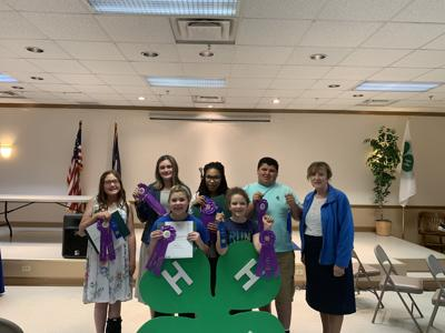 Pike 4-H regional winners to compete at state