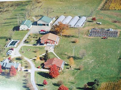 Quest Farm