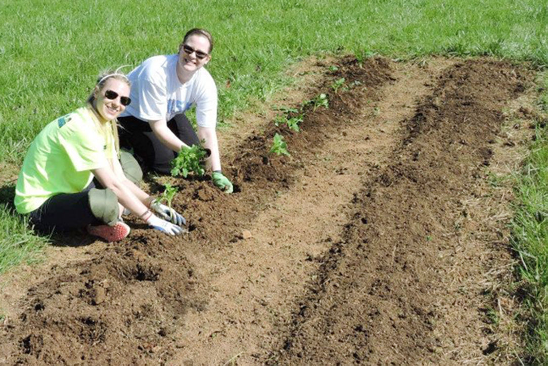 PLAYLoudon offers fall veggies