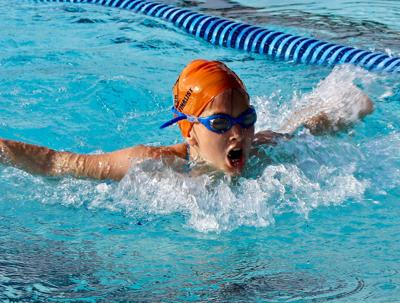 LC Bettas wrap up brief swim season