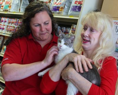 Villager works to save senior cats