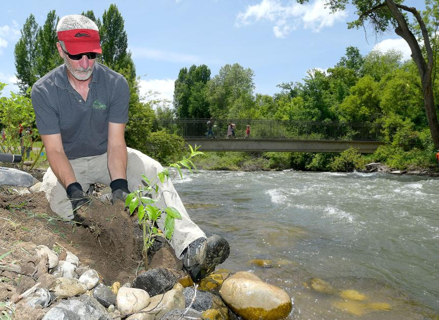 Thumbnail for Logan River planting showcases restoration process