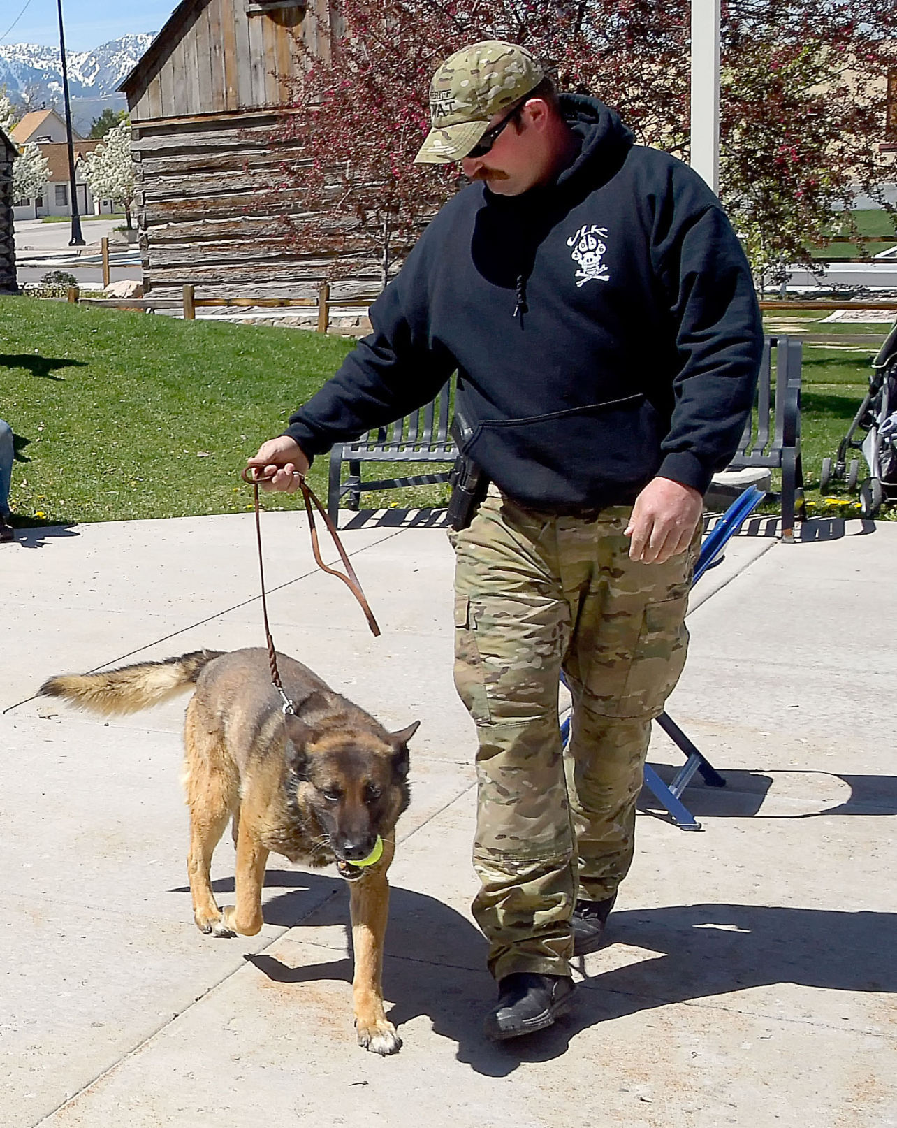 Cache County deputy charged in death of K-9