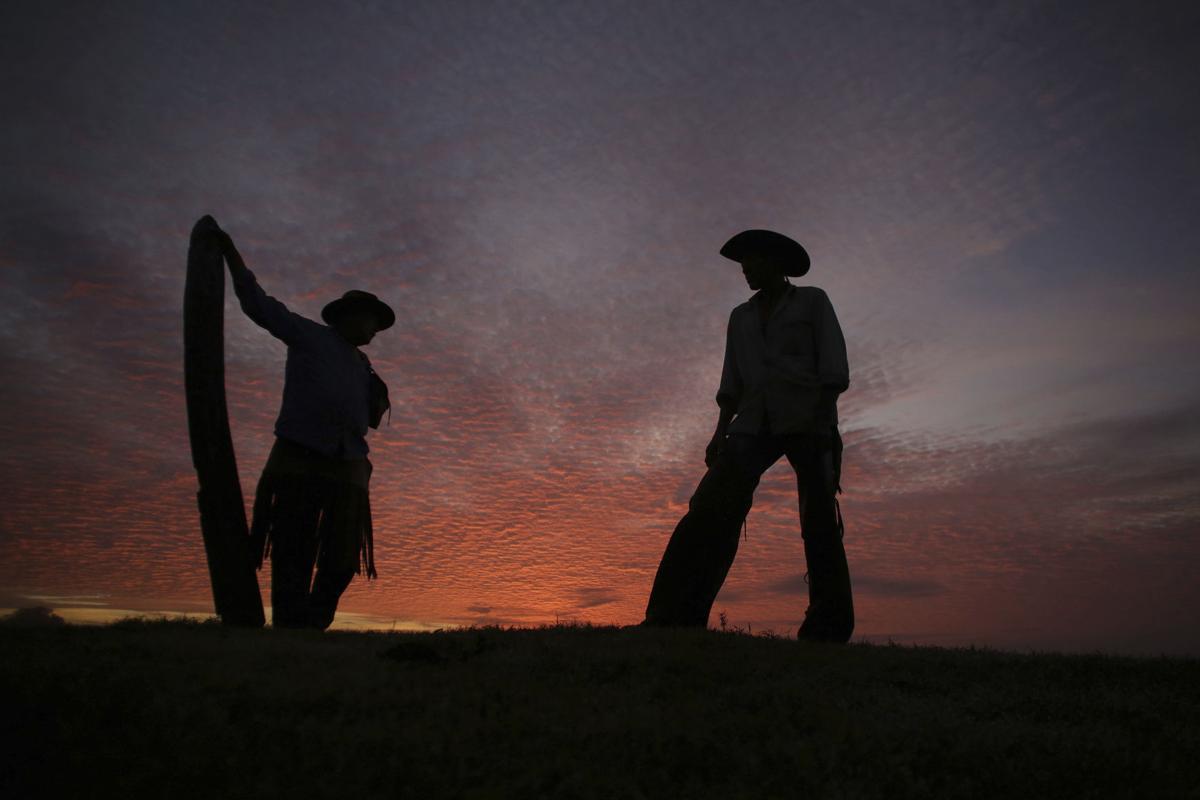 APTOPIX Brazil Wetland Cowboys Photo Gallery
