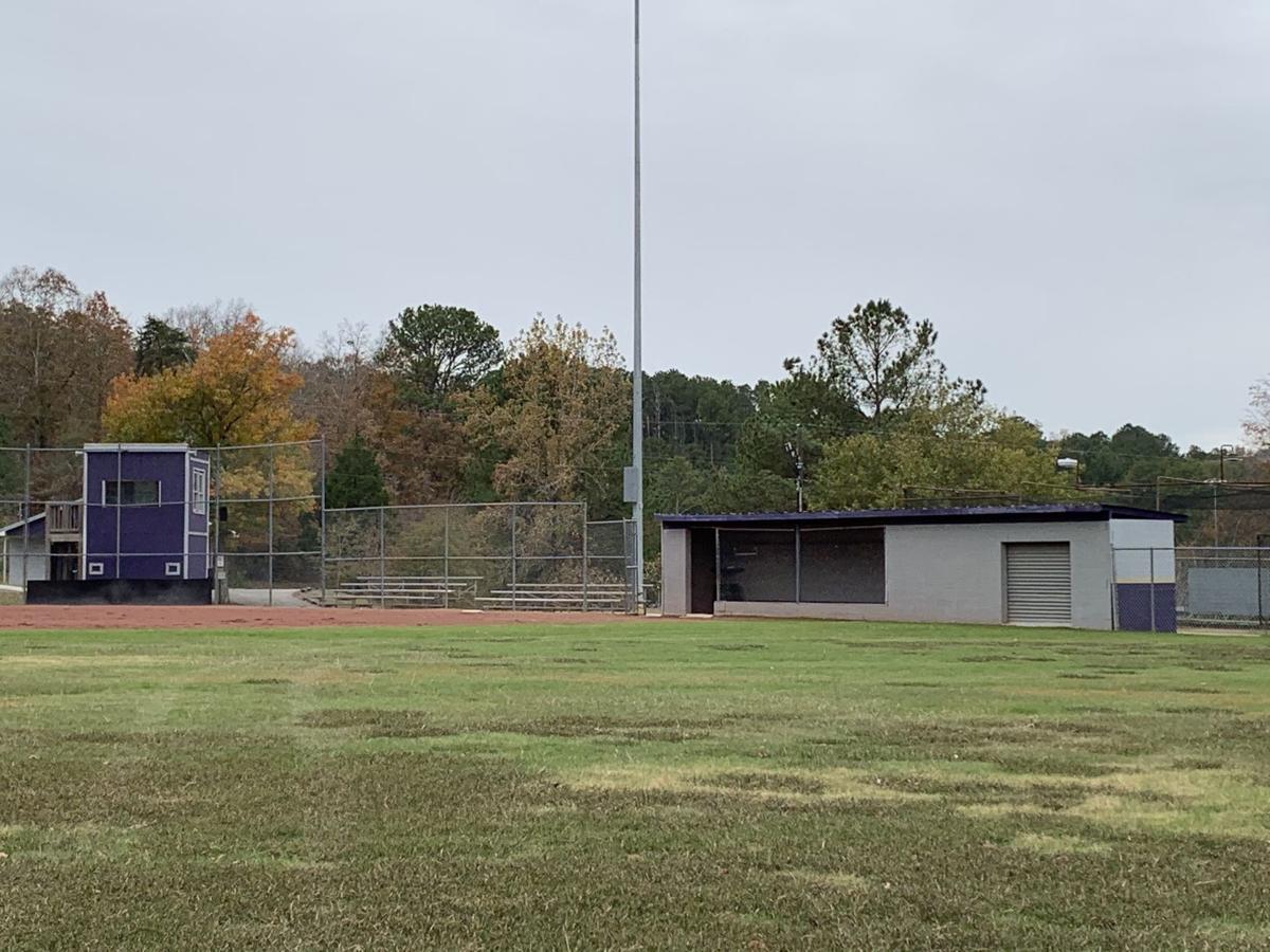 Springville softball.jpeg