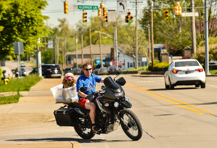 Biker and Barker-2.jpg