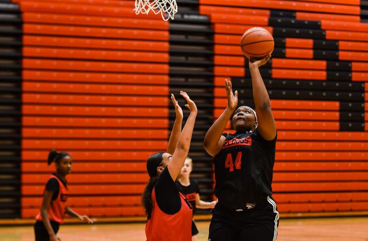 New Albany Girls Basketball preview-2.jpg