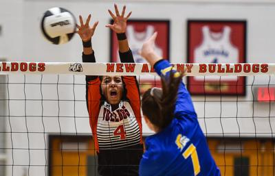 New Albany Christian Academy volleyball-1.jpg