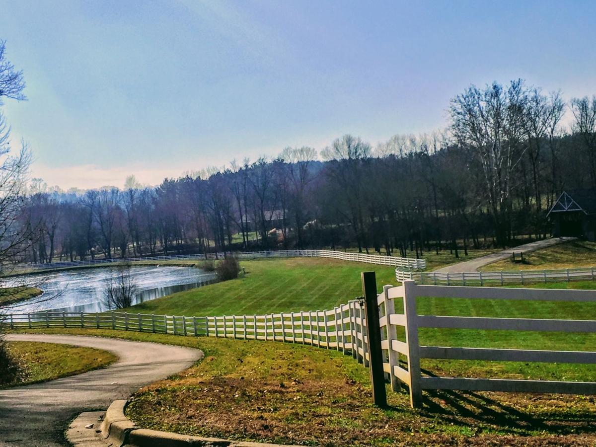 Possible sale of Wooded Glen intended to serve the addicted and ...