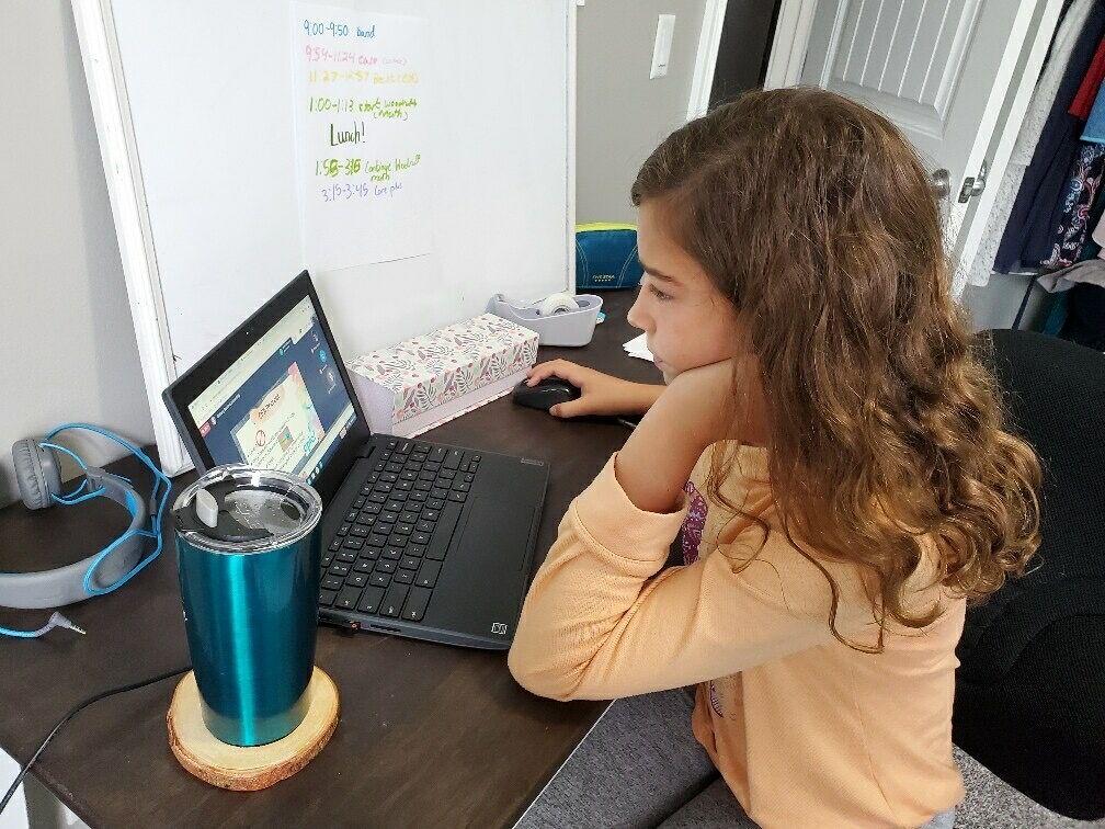 Virtual Learning-2