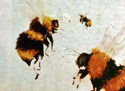 Bumblebee utility box