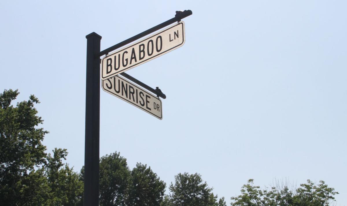 Bugaboo - 4