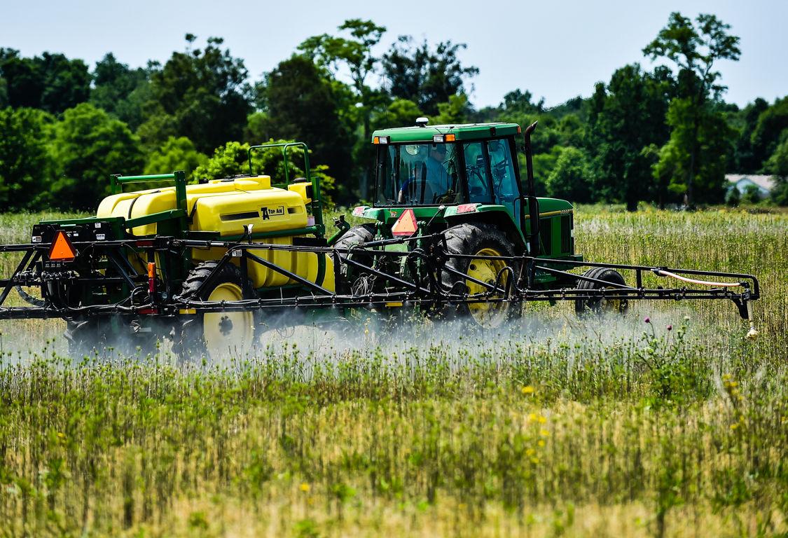 Delayed Farming-2.jpg