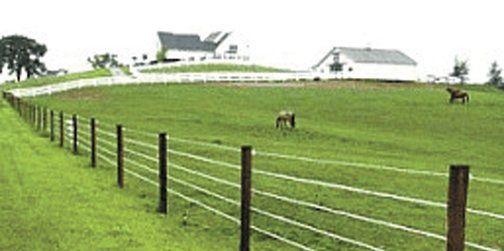 Silver Livestock Fencing - Image 1