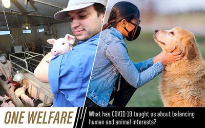 Croney Animal Welfare Symposium