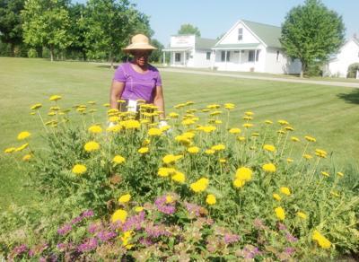 Master Gardeners Pic 1.jpg