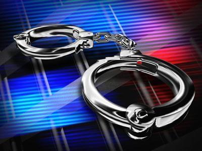 Arrest Log
