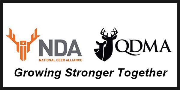 NDA merger