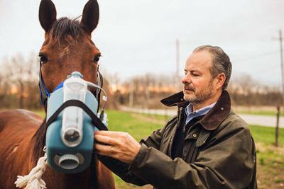 Horse asthma