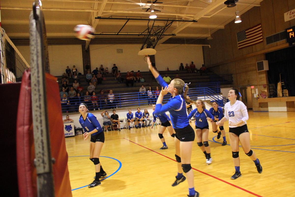 Milford sweeps past St. Anne in Sheldon | Iroquois County\'s Times ...