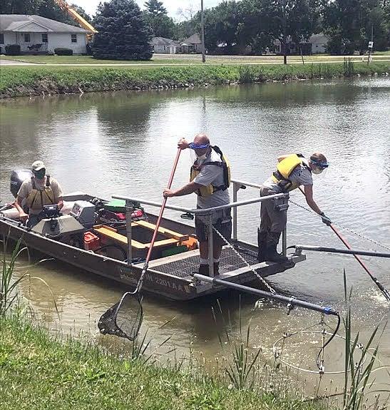 Goodland Pond fish survey