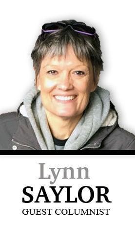 Lynn Saylor column sig